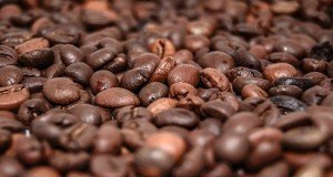 Coffee factory nets £30m investment