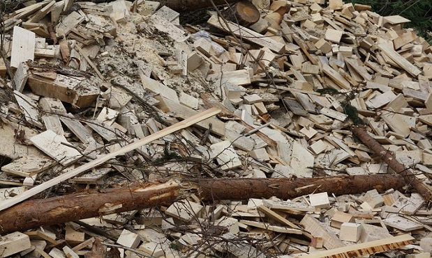 The new biomass plant will use local wood sources for renewable energy sources