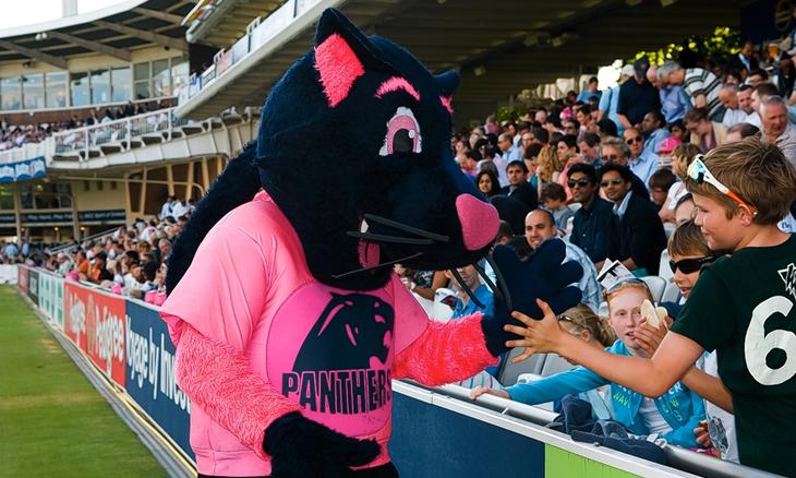 Cricket Mascot - Warrington: £7.00/hour