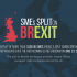 Among the UK's largest cities, the division among Britain's SMEs was more pronounced with 58 percent of firms in London wanting to stay in the EU