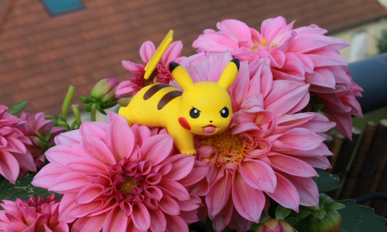Pokemon_at_work
