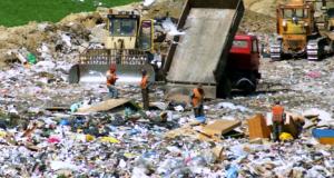 search-through-waste