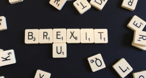 Brexit-one-month-on