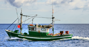 Family-fishermen