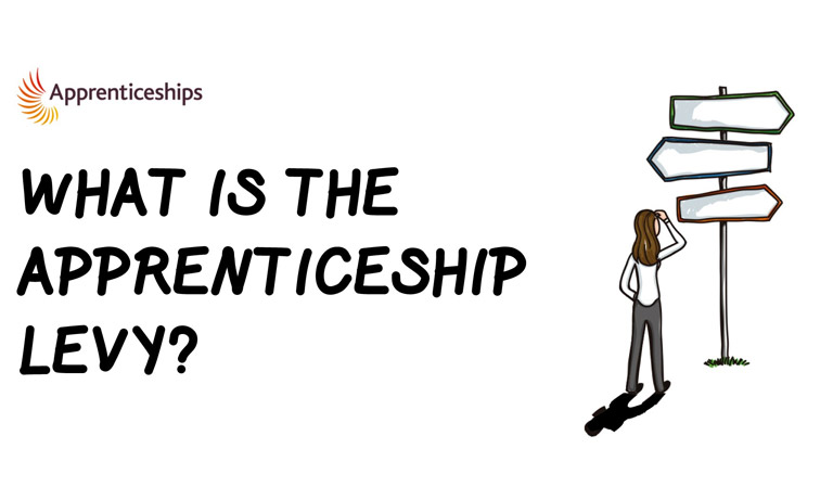 new-apprentice-levy